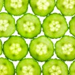 Slices of fresh Cucumber / background / back lit — Stock Photo #9331034