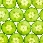 Slices of fresh Cucumber / background / back lit — Stock Photo #9331034