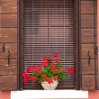 Old European Window / with flowers and wooden shutters — Stock Photo