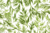 Fresh Dill close-up background / back-lit — Stock Photo