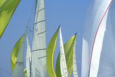 Sailing in Good Wind / sails background — Stock Photo
