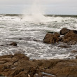 Atlantic Ocean — Stockfoto #8715337
