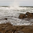 Atlantic Ocean — Photo #8715337