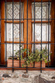 Window with grates — Stock Photo