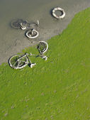 Dried up green river bed reveals muddy bicycle — Stock Photo