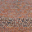 Orange pink bright colored aged brick wall — Stock Photo #8722334