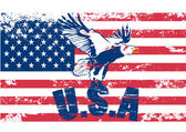 Eagle with usa in grunge illustration — Stock Vector