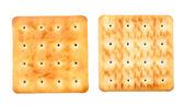 Cracker sides — Stock Photo