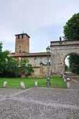 Hrad vigolzone. emilia-romagna. itálie. — Stock fotografie