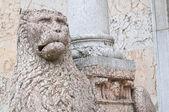 Katedrála. piacenza. emilia-romagna. itálie. — Stock fotografie