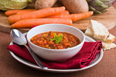 Vegetable soup. — Stock Photo