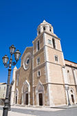 Cathedral Basilica. Lucera. Puglia. Italy. — Stock Photo