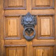 Doorknocker. — Stock Photo #10601538