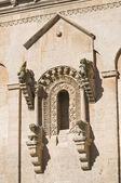 Detalle de la catedral de matera. basilicata. italia. — Foto de Stock