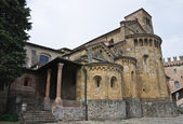 Collegiata Church. Castell'Arquato. Emilia-Romagna. Italy. — Stock Photo