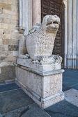Kathedraal. parma. emilia-romagna. italië. — Stockfoto
