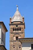 St. Pietro Belltower Cathedral. Bologna. Emilia-Romagna. Italy. — Stock Photo