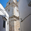 Cathedral Basilica. Vieste. Puglia. Italy. — Stock Photo