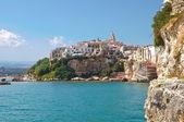 Panoramic view of Vieste. Puglia. Italy. — Zdjęcie stockowe