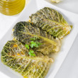 Savoy cabbage rolls on white dish. — Lizenzfreies Foto