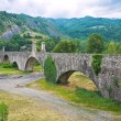 Hunchback Bridge. Bobbio. Emilia-Romagna. Italy. — Stock Photo #9514183
