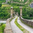 Hunchback Bridge. Bobbio. Emilia-Romagna. Italy. — Stock Photo #9761071