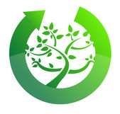 Tree cycle recycle concept illustration design on white — Stock Photo
