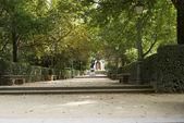 Pasarela con escaleras en el jardín botánico — Foto de Stock