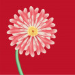 Excellent pink flower is aster against red background - Stock Vector