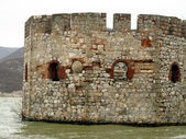 The ruins of the old tower on the Danube in Serbia — Stock Photo