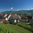Rapperswil, Switzerland — Stock Photo