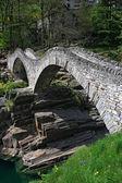Ponte dei Salti bridge — Stock Photo