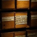 Boxen von getrockneten Heilkräutern — Stockfoto