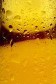 Beer and condensation — Stock Photo