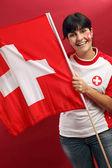 スイスのファン — ストック写真