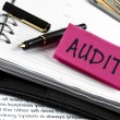 Audit  on agenda and pen — Stockfoto