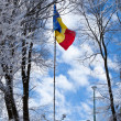 Royalty-Free Stock Photo: Romanian flag on top of the Tampa mountain