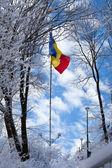 Rumänische flagge oben auf dem berg tampa — Stockfoto