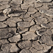 Cracked lifeless soil — Stock Photo #8273802