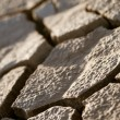 Cracked lifeless soil — Stock Photo #8273814