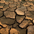 Cracked lifeless soil — Stock Photo #8513703
