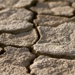 Cracked lifeless soil — Stock Photo #8513710