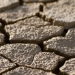 Cracked lifeless soil — Stock Photo #8513713