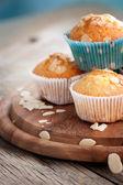 Läckra muffins — Stockfoto