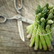 Freshly harvested asparagus — Stock Photo