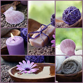 Dayspa violet collage — Stock Photo