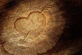 Láska text na dřevěné pozadí — Stock fotografie
