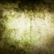 Grunge background with mould stains — Stock Photo