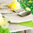 Easter place setting — Stock Photo #8866297