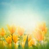 春天的复活节背景 — 图库照片